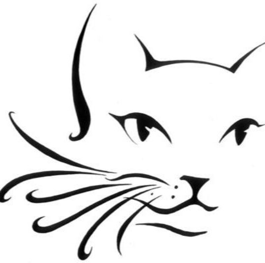 539x536 Cat Outline Cheekarm Design Face Painting Designs By Valerie