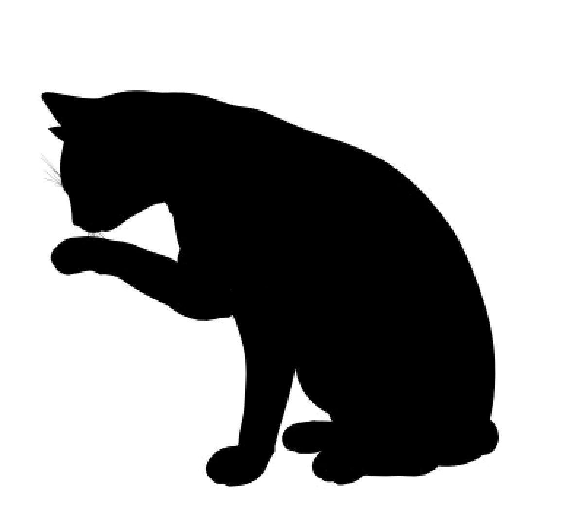 cat silhouette vector at getdrawings com free for personal use cat rh getdrawings com dog cat silhouette vector free black cat silhouette vector