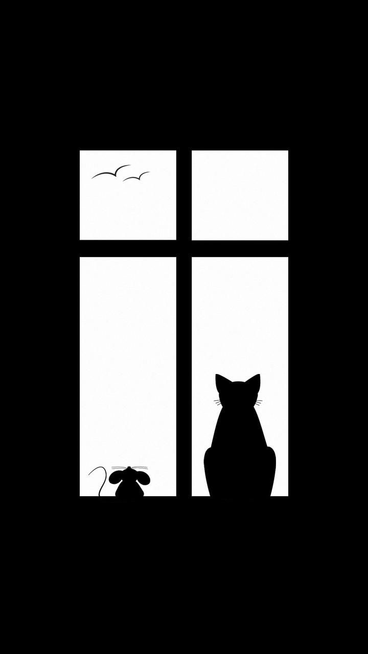 720x1280 Download Wallpaper 720x1280 Cat, Picture, Window, Silhouette