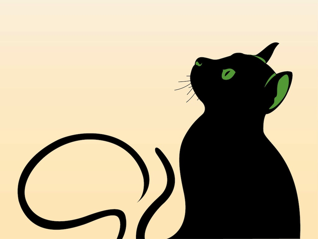 1024x768 Graphics Cat Graphics