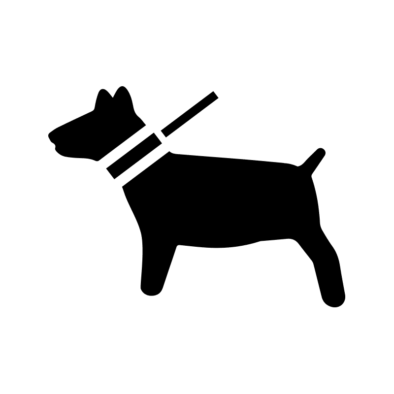 800x800 Pet Care Services Cat Sitters Near Me Boarding Your Dog