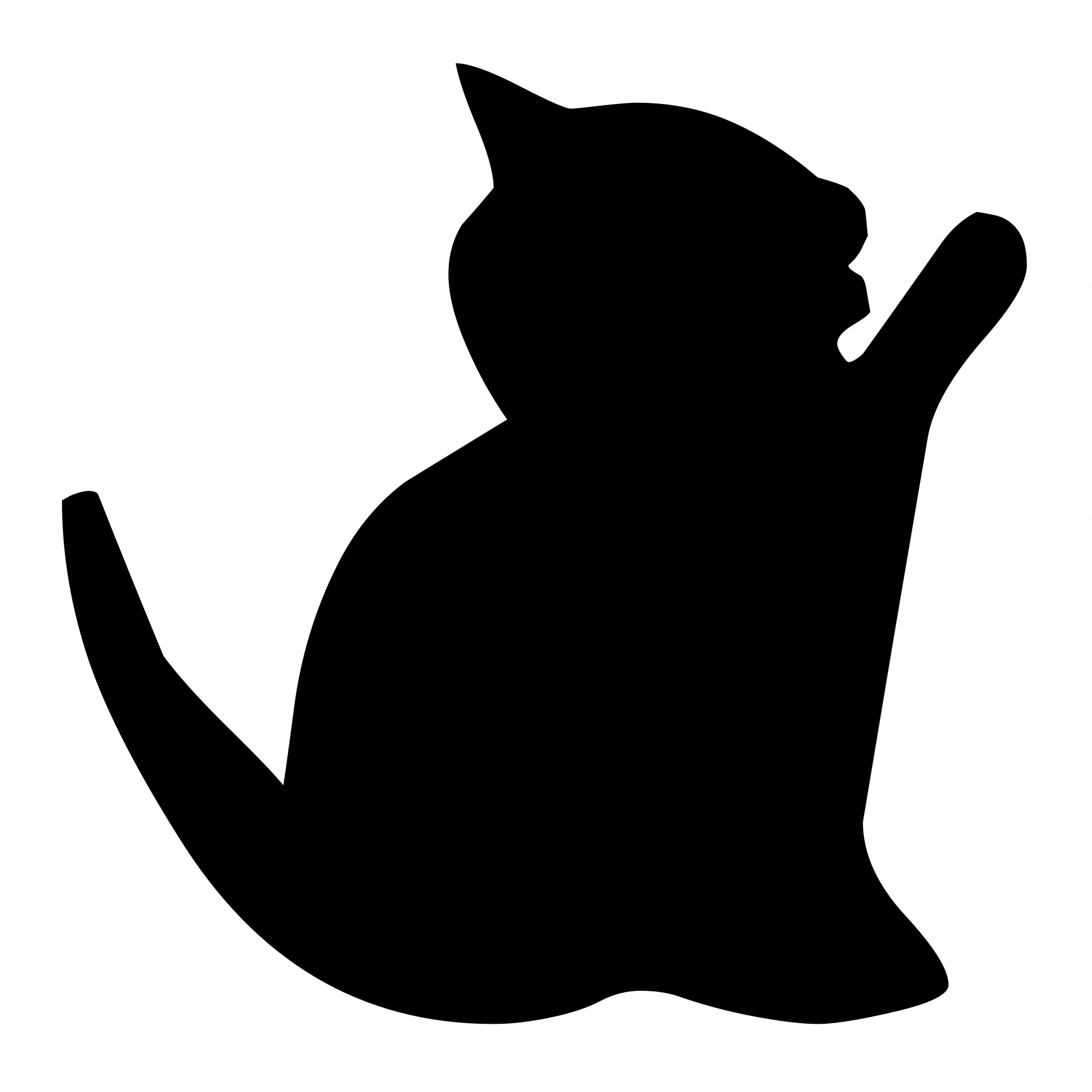 1920x1920 Silhouette Of A Cat Free Stock Photo
