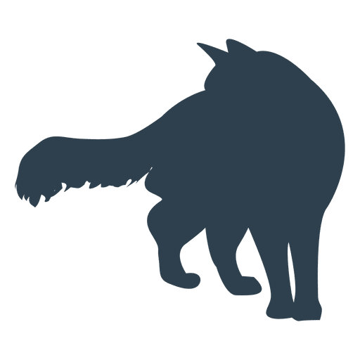 512x512 Fluffy Tail Cat Silhouette