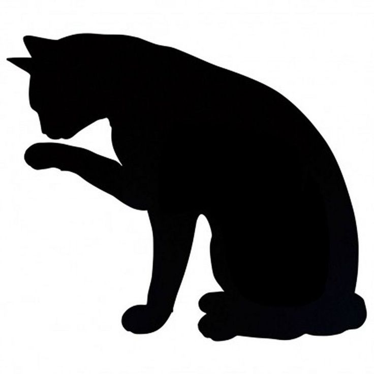 736x736 Black Cat Silouette Little Cute Black Cats