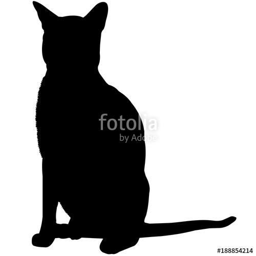 500x500 Abyssinian Cat Silhouette Vector Graphics Stock Image And Royalty