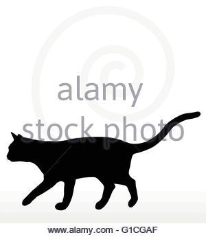 300x345 Cat Silhouette In Walking Pose Stock Vector Art Amp Illustration