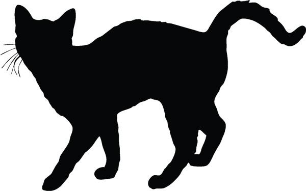 600x375 Cat Silhouette's Silhouette S, Cat Silhouette And Silhouettes
