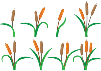 352x247 Cattails Silhouette Vectors Free Vector Download 399169 Cannypic