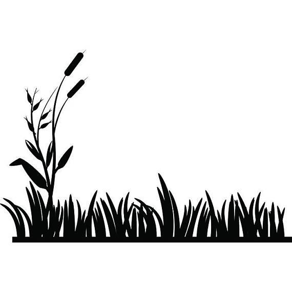 570x570 Detailed Grass