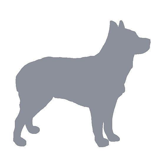 550x550 Australian Stumpy Tailed Cattle Dog Blue Silhouette Dog Breeds