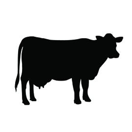 270x270 Cow Silhouette Stencil Free Stencil Gallery