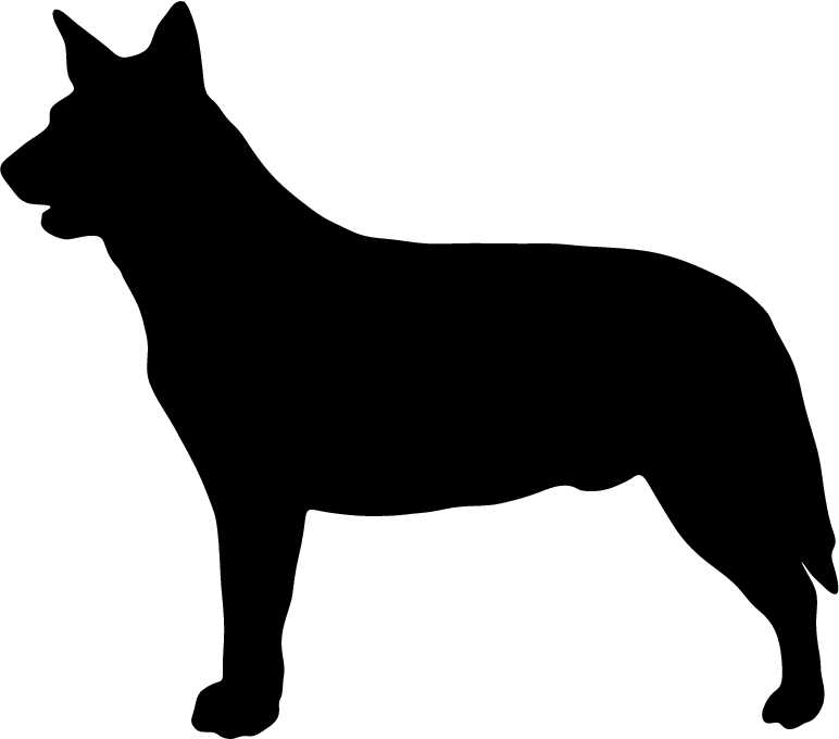 772x680 Australian Cattle Dog Clipart