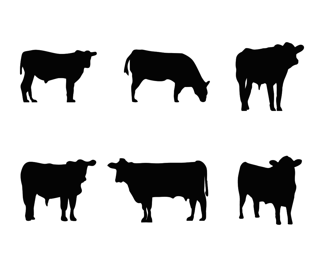1136x936 Cattle Silhouette Vector Vector Art Amp Graphics