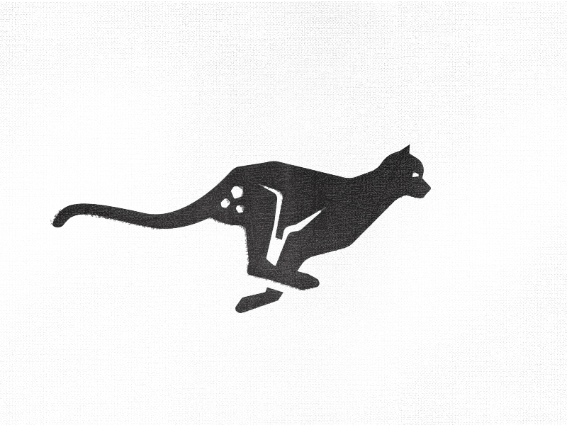 800x600 Cheetah Logo Proposal By Jason Feltz