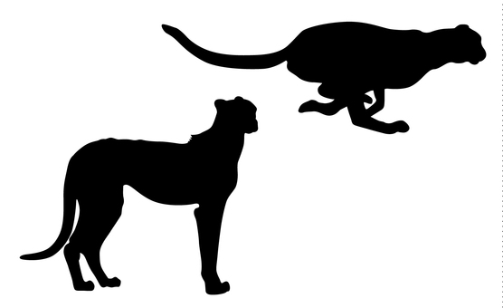 556x340 Free Silhouette Vector Africa, An Illustration