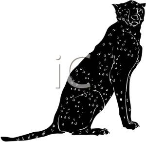 300x291 Silhouette Of An Adult Cheetah