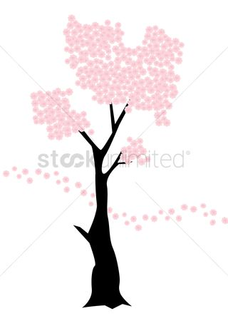 320x450 Free Cherry Blossom Tree Stock Vectors Stockunlimited