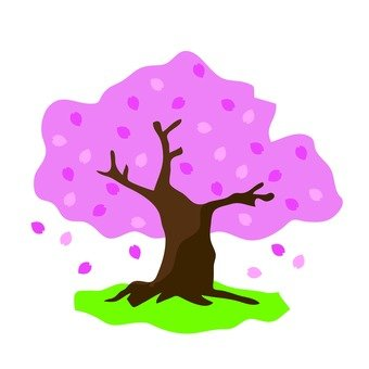 340x340 Free Silhouette Vector Cherry Blossom Viewing