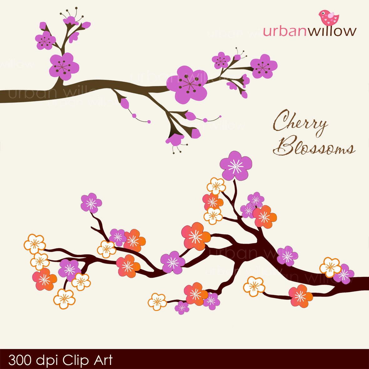 1181x1181 Cherry Blossom Clipart Purple 3149665