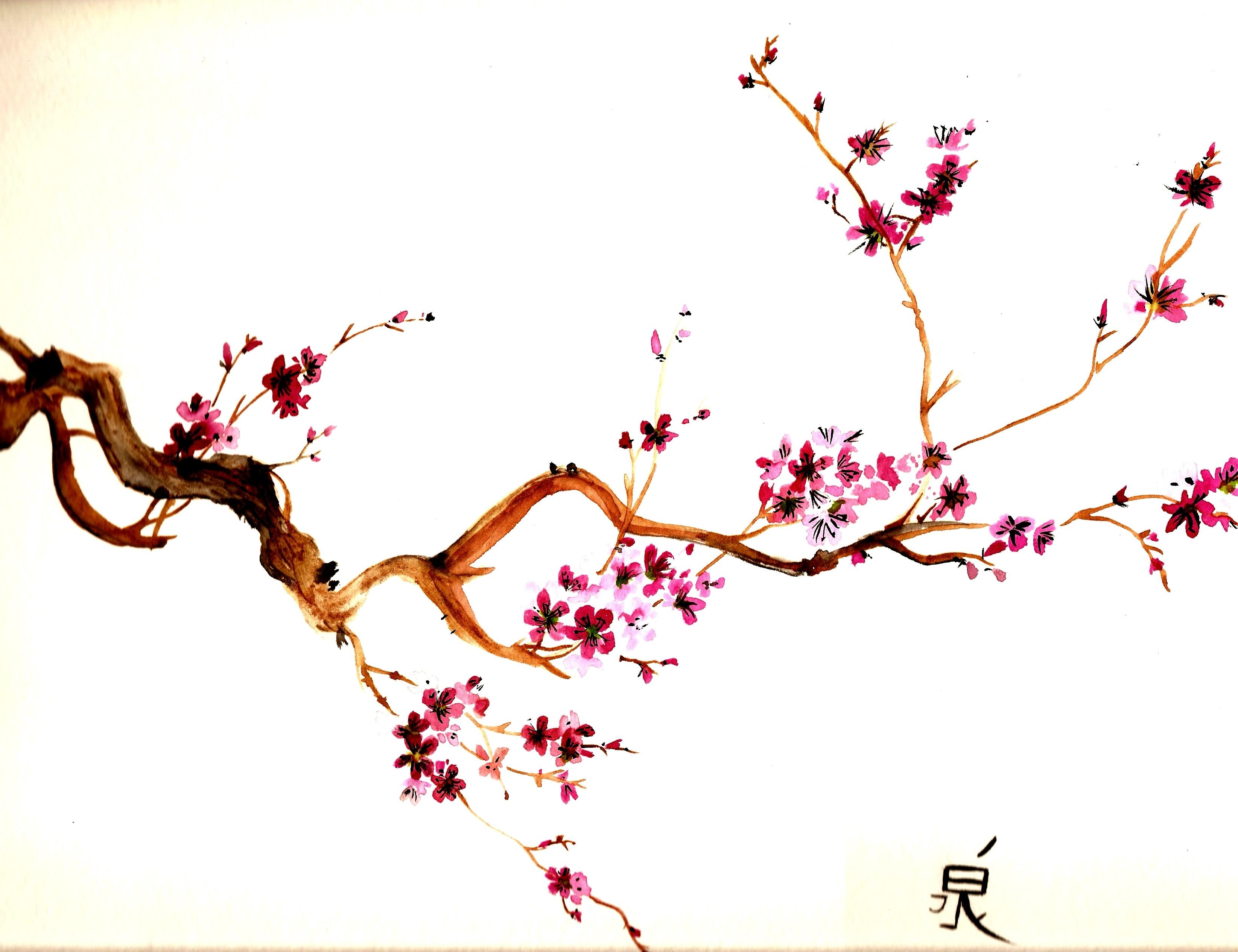 3290x2531 Drawn Cherry Blossom Sakura Tree