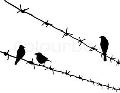 236x183 A Bird Sitting On A Tree Is Never Afraid Of The Branch Breaking