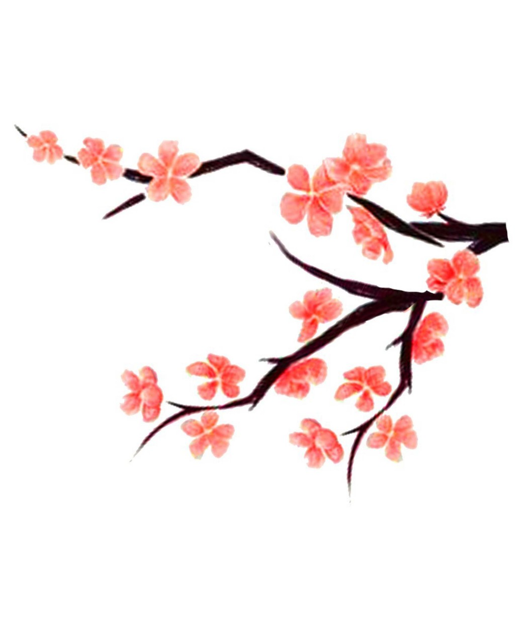 1024x1280 Peach Tree Blossom Clipart