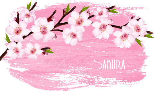500x293 Sakura Free Vector Download (47 Free Vector) For Commercial Use