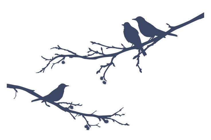 736x489 A Bird Sitting On A Tree Is Never Afraid Of The Branch Breaking