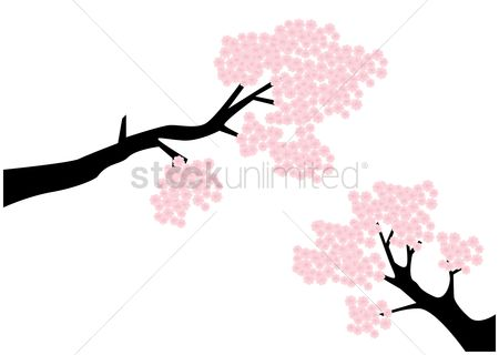 450x320 Free Cherry Blossom Tree Stock Vectors Stockunlimited
