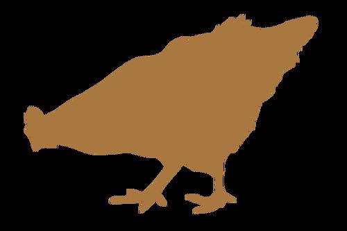 500x333 Chick Silhouette Public Domain Vectors