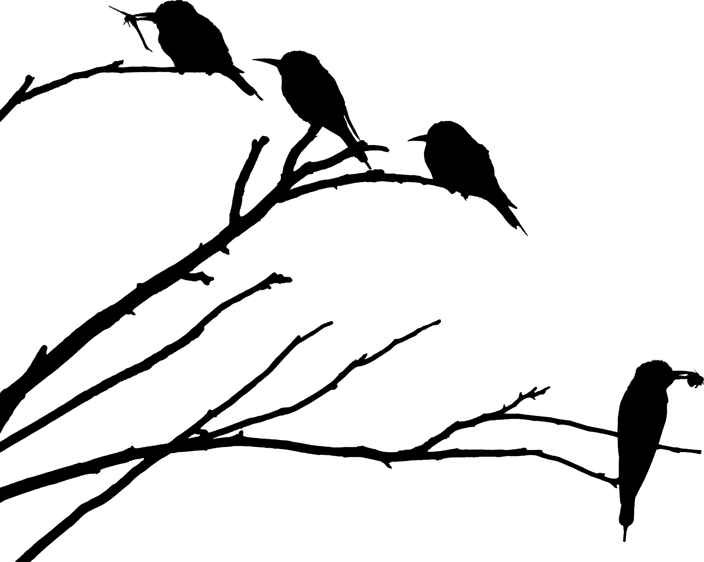 2291x1830 European Bee Eaters Silhouette Icons Png