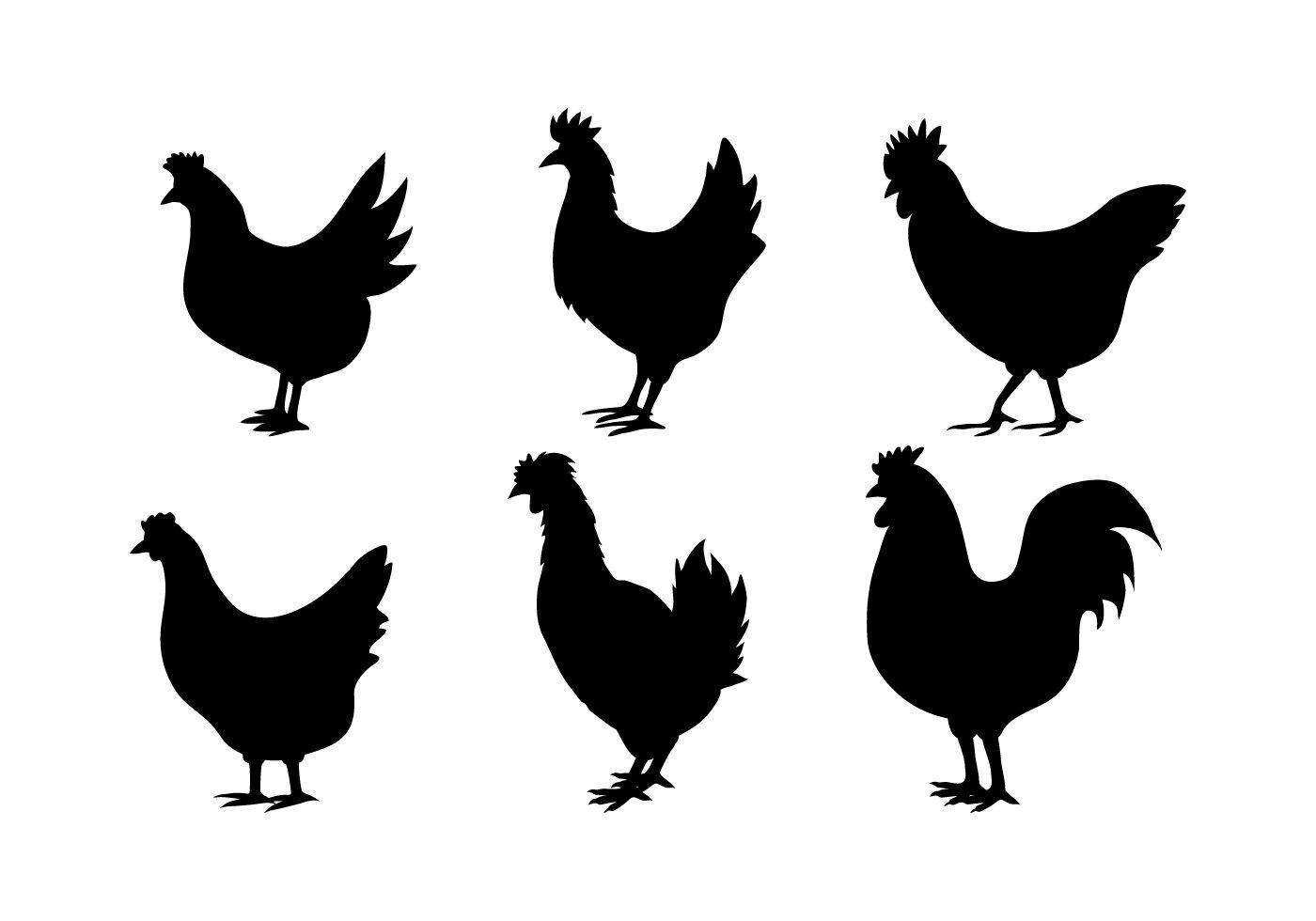 1400x980 Chicken Vector Art S Chicken Silhouette Vectors Adult
