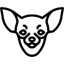 128x128 Chihuahua Vectors, Photos And Psd Files Free Download