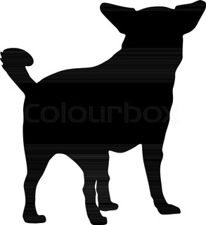 293x320 Vector Image Of An Chihuahua Puppies On White Background Stock