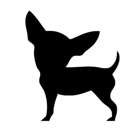 480x480 Chihuahua Sticker For Your Car Or Laptop Chihuahua Play