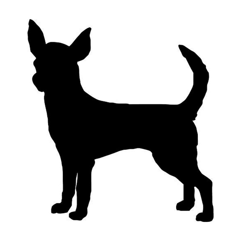 800x800 9.58.9cm Chihuahua Dog Vinyl Decal Cute Car Stickers Motorcycle