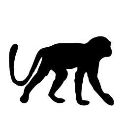 250x250 Monkey Silhouette Silhouettes Monkey, Silhouette
