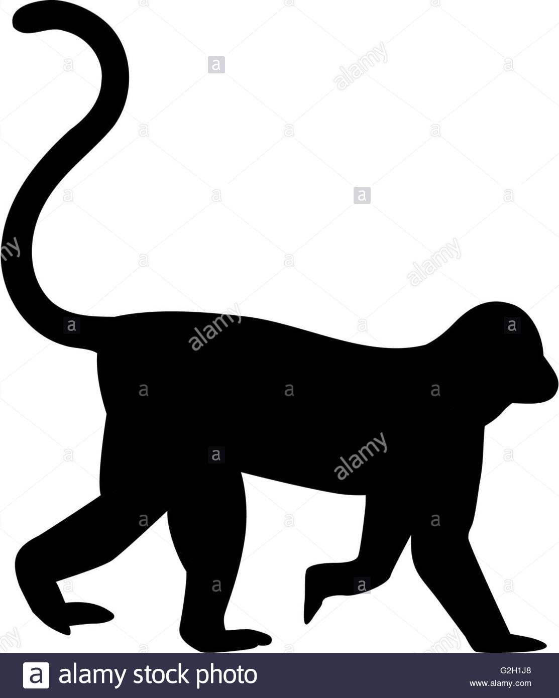 1113x1390 Chimpanzee Silhouette Stock Photos Amp Chimpanzee Silhouette Stock