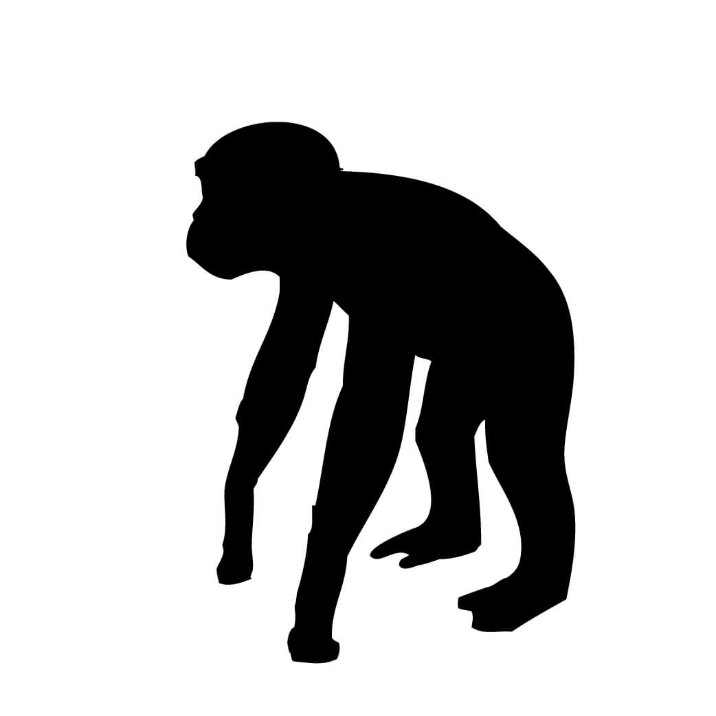 1042x1042 Monkey Silhouette