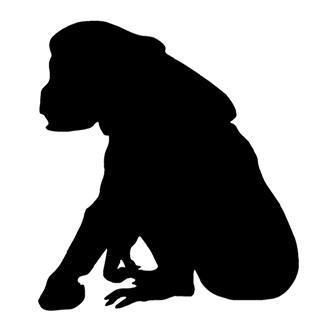 320x328 Chimpanzee Silhouette 2 Decal Sticker
