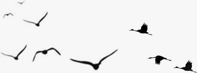 650x242 China Plover Silhouette, Chinese Style, Bird, Sketch Png Image