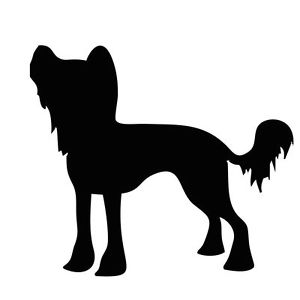 300x300 New Chinese Crested Silhouette Sticker Toy Dog Breed Stickers Car