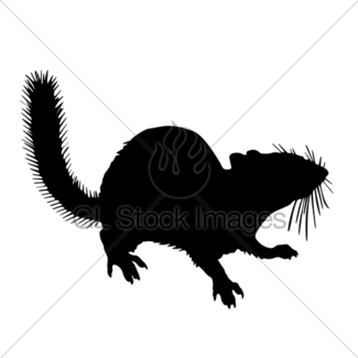 325x325 Chipmunk Silhouette Animal Clip Art Gl Stock Images
