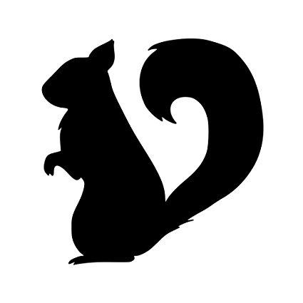 425x425 Squirrel Vinyl Decal Sticker
