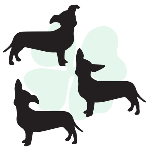 500x500 Custom Vinyl Decals Clever Clover Design The Dachshund Collection