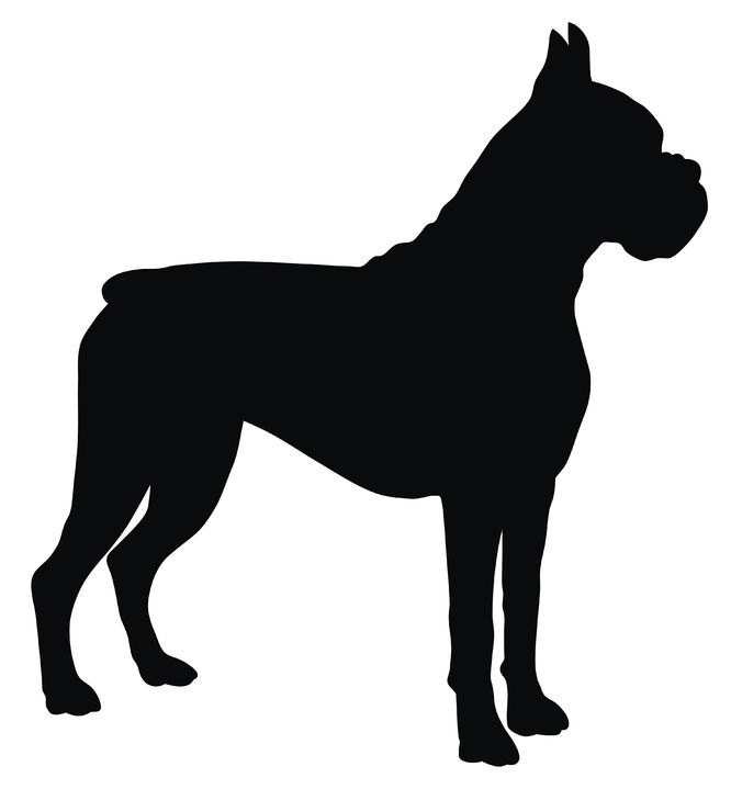 666x719 Boxer Silhouette Dogs Rule Clipart Library