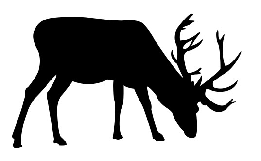 537x330 Deer Fat Silhouette Dxf File Free Download