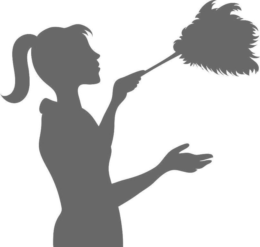 895x850 Feather Duster Cleaning And Ironing Services
