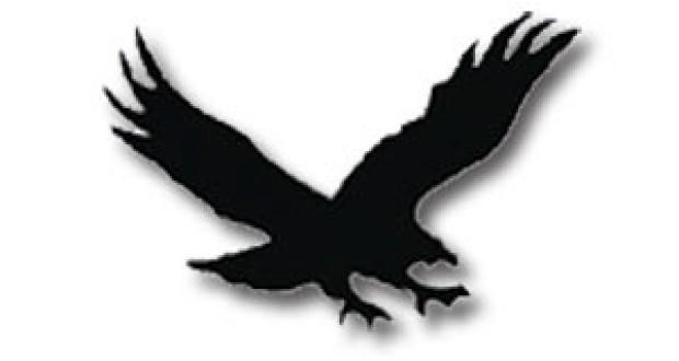 620x330 Hawk Silhouette Clip Art Wings