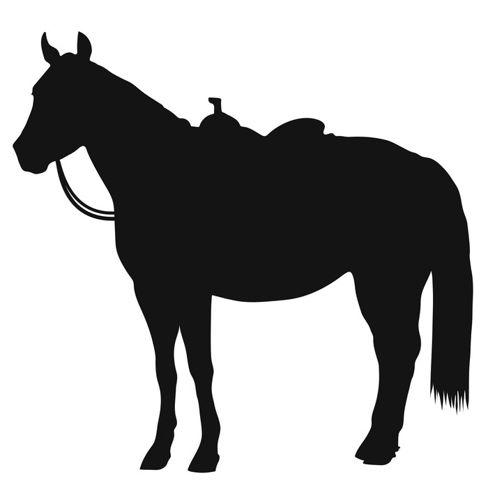 700x700 Western Horse Silhouette Wall Mural We Live To Change